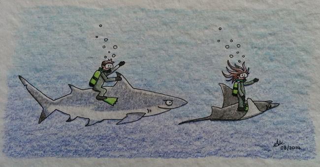 Requin et raie manta